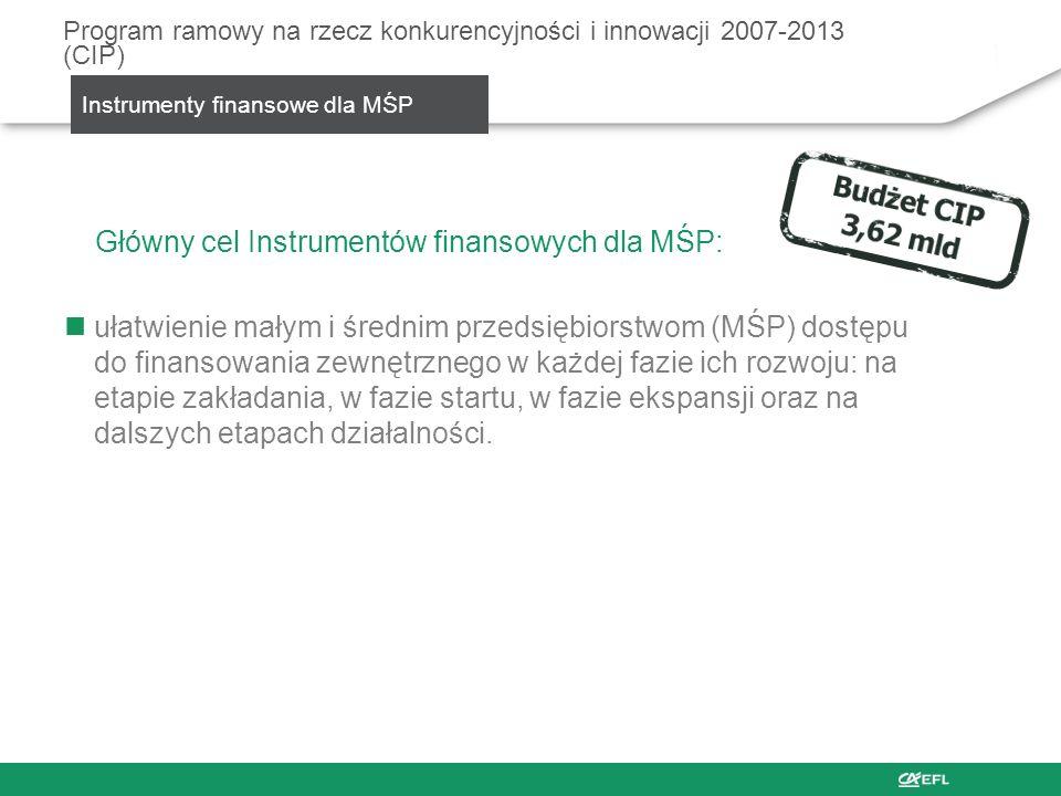SMEG – SME Guarantee Facility System poręczeń dla MŚP Cele: Gwarancje na rzecz instytucji finansowych Regwarancje na rzecz systemów gwarancyjnych Instytucja wdrażająca: Europejski Fundusz Inwestycyjny (EFI) Europejski Fundusz Leasingowy jest pierwszą w Polsce i drugą w Europie firmą leasingową, która otrzymała poręczenie z EFI Program ramowy na rzecz konkurencyjności i innowacji 2007-2013 (CIP) SMEG – System poręczeń dla MŚP