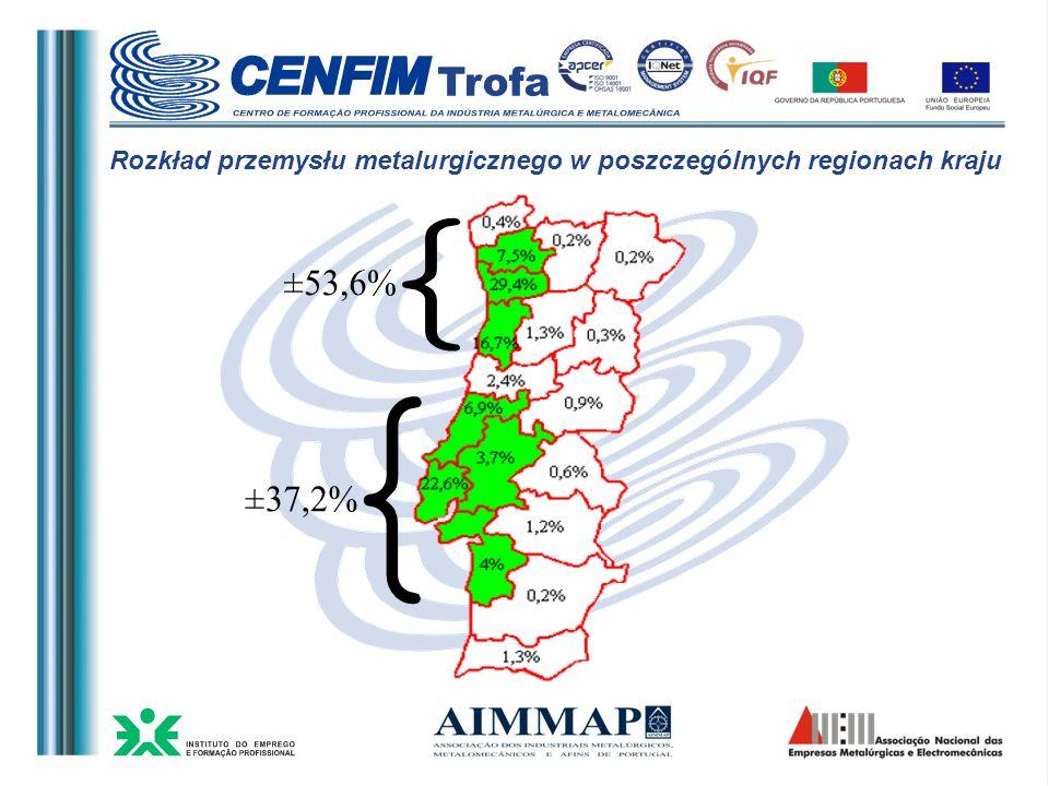 Rozkład przemysłu metalurgicznego w poszczególnych regionach kraju