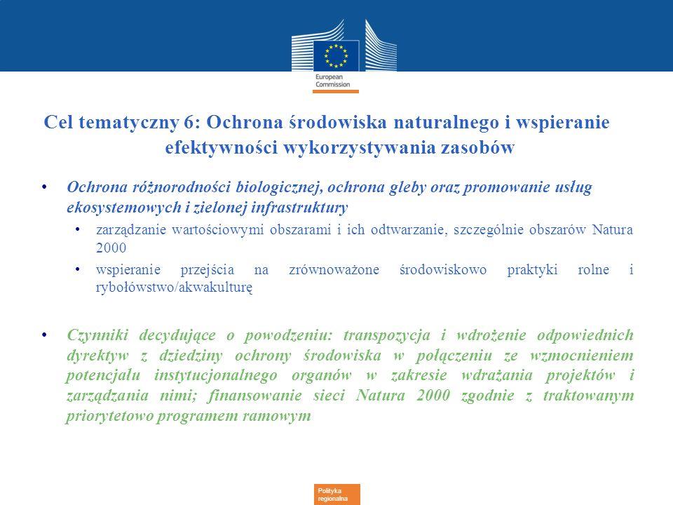 Polityka regionalna Cel tematyczny 6: Ochrona środowiska naturalnego i wspieranie efektywności wykorzystywania zasobów Ochrona różnorodności biologicz
