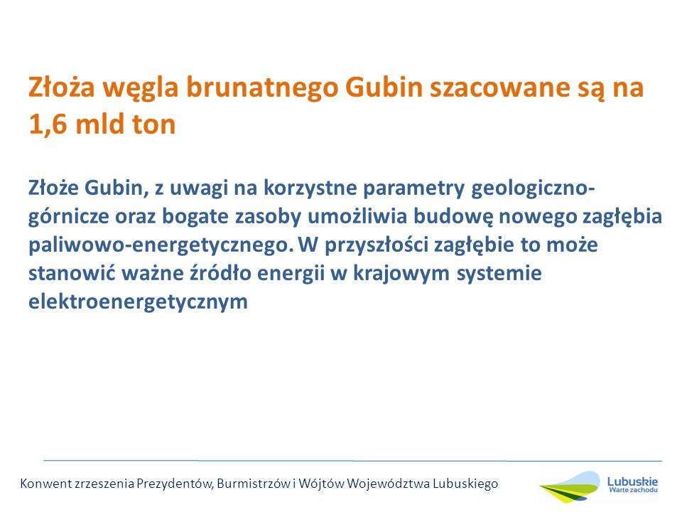 Złoża węgla brunatnego Gubin szacowane są na 1,6 mld ton Złoże Gubin, z uwagi na korzystne parametry geologiczno- górnicze oraz bogate zasoby umożliwia budowę nowego zagłębia paliwowo-energetycznego.