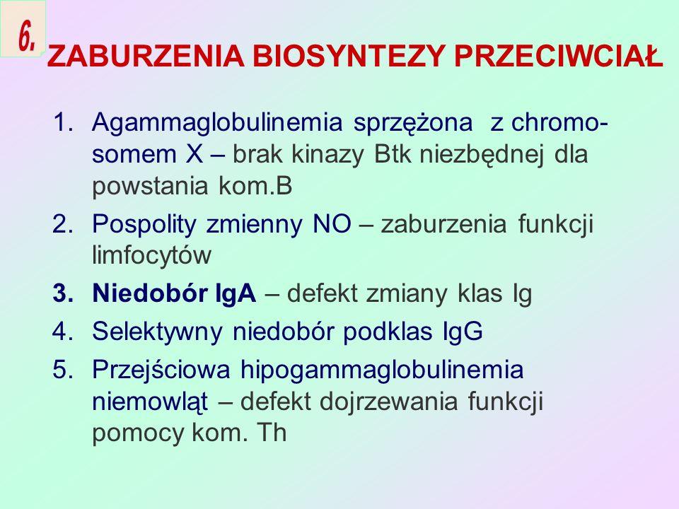 ZABURZENIA BIOSYNTEZY PRZECIWCIAŁ 1.Agammaglobulinemia sprzężona z chromo- somem X – brak kinazy Btk niezbędnej dla powstania kom.B 2.Pospolity zmienn