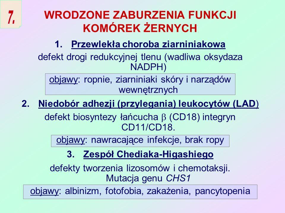ZABURZENIA LICZBY FAGOCYTÓW 1.Zespół Kostmanna dziecięca agranulocytoza objawy: ciężkie zakażenia, posocznica już w okresie noworodkowym 2.Cykliczna neutropenia okresowy (co 2-3 tyg.) spadek liczby neutrofili <200/ l 3.Zespół Shwachmana neutropenia z defektami chemotaksji i zabijania; niewydolność trzustki 4.Przewlekła łagodna rodzinna neutropenia