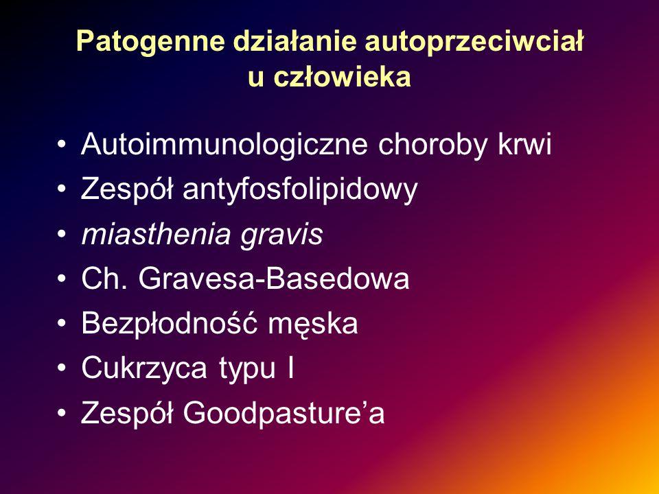 Patogenne działanie autoprzeciwciał u człowieka Autoimmunologiczne choroby krwi Zespół antyfosfolipidowy miasthenia gravis Ch. Gravesa-Basedowa Bezpło