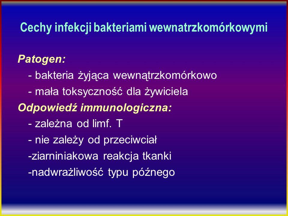 Cechy infekcji bakteriami wewnatrzkomórkowymi Patogen: - bakteria żyjąca wewnątrzkomórkowo - mała toksyczność dla żywiciela Odpowiedź immunologiczna: