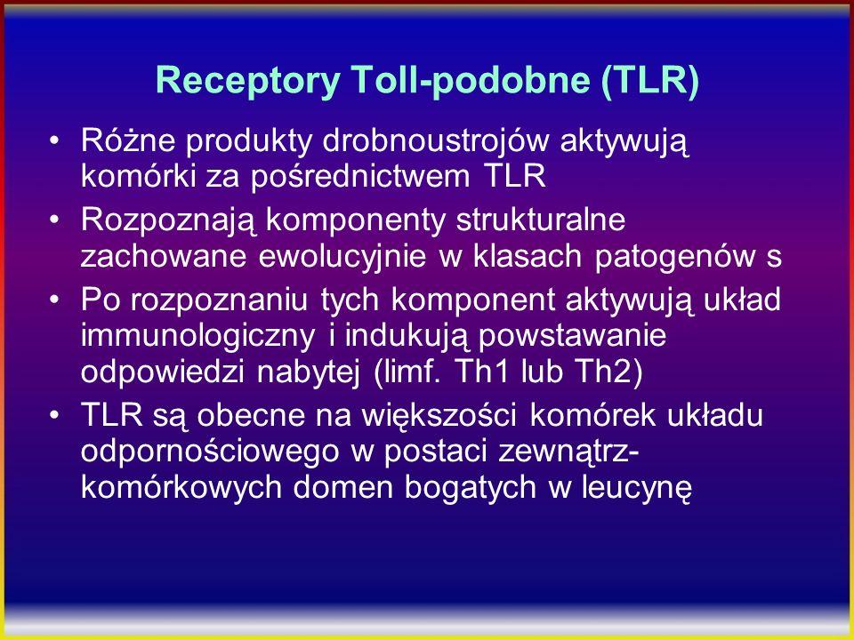 Receptory Toll-podobne (TLR) Różne produkty drobnoustrojów aktywują komórki za pośrednictwem TLR Rozpoznają komponenty strukturalne zachowane ewolucyj