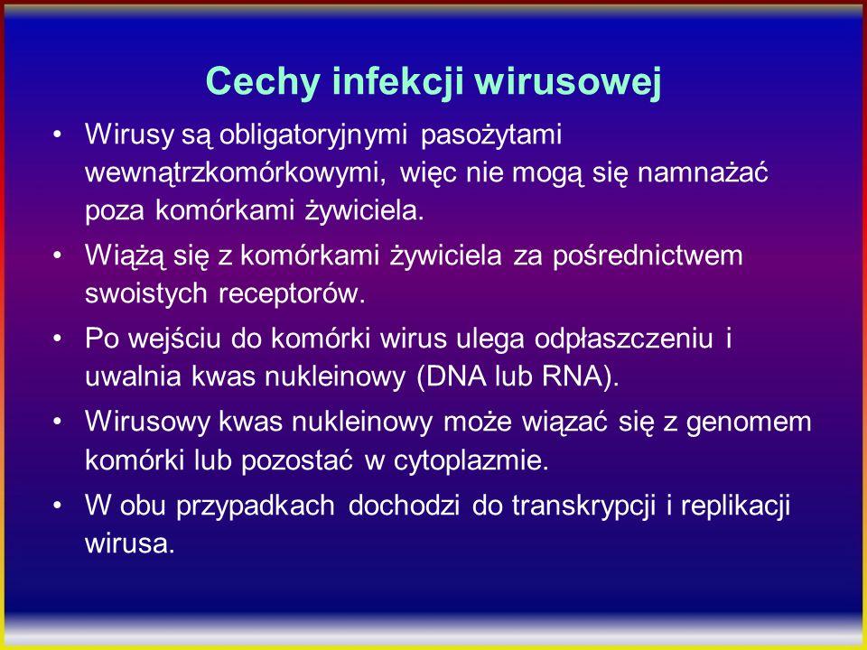 Cechy infekcji wirusowej Wirusy są obligatoryjnymi pasożytami wewnątrzkomórkowymi, więc nie mogą się namnażać poza komórkami żywiciela. Wiążą się z ko