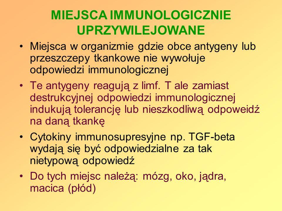 MIEJSCA IMMUNOLOGICZNIE UPRZYWILEJOWANE Miejsca w organizmie gdzie obce antygeny lub przeszczepy tkankowe nie wywołuje odpowiedzi immunologicznej Te a