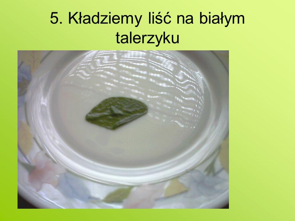 5. Kładziemy liść na białym talerzyku