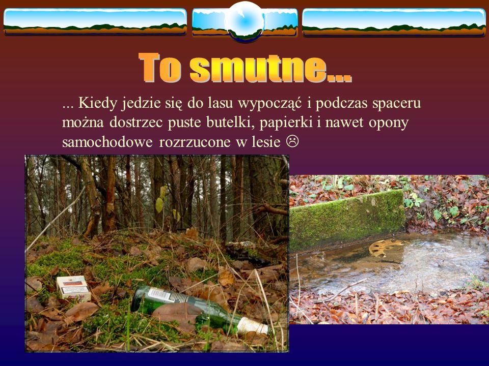 Niektórzy z nas nie dbają o to, by wyrzucać śmieci do pojemników przeznaczonych na nie i jadą do lasu nie po to, by wypoczywać, ale wyrzucić śmieci z