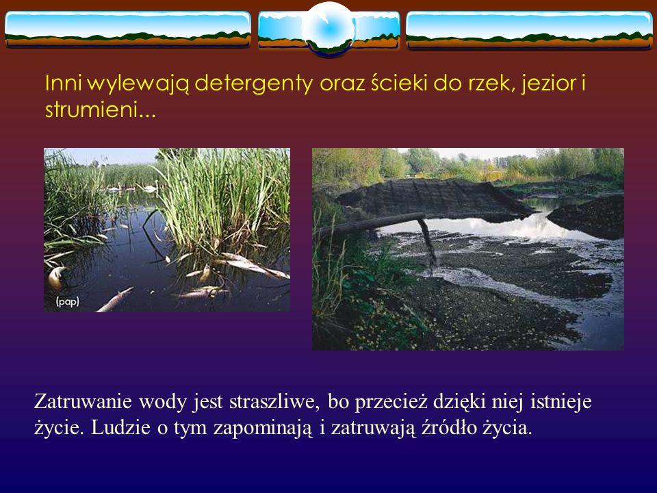 Oto jedno z dzikich wysypisk leśnych na terenie jednego z parków narodowych w Polsce istniejące od lat... To przykre, że ludzie nie szanują nawet obsz