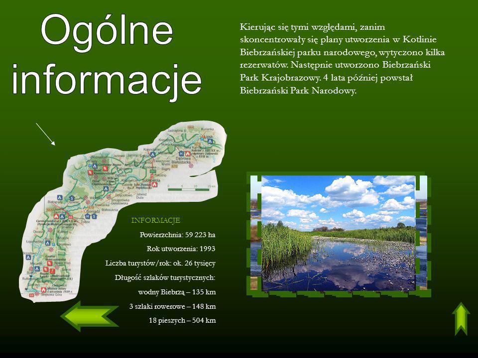 INFORMACJE Powierzchnia: 59 223 ha Rok utworzenia: 1993 Liczba turystów/rok: ok. 26 tysięcy Długość szlaków turystycznych: wodny Biebrzą – 135 km 3 sz
