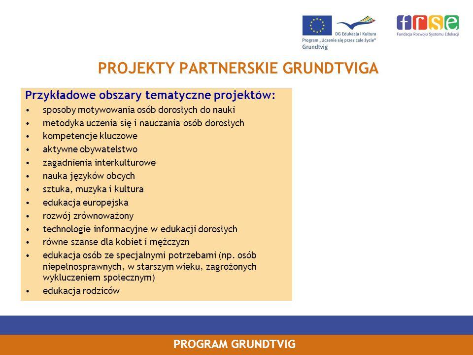 PROGRAM GRUNDTVIG PROJEKTY PARTNERSKIE GRUNDTVIGA Przykładowe obszary tematyczne projektów: sposoby motywowania osób dorosłych do nauki metodyka uczen