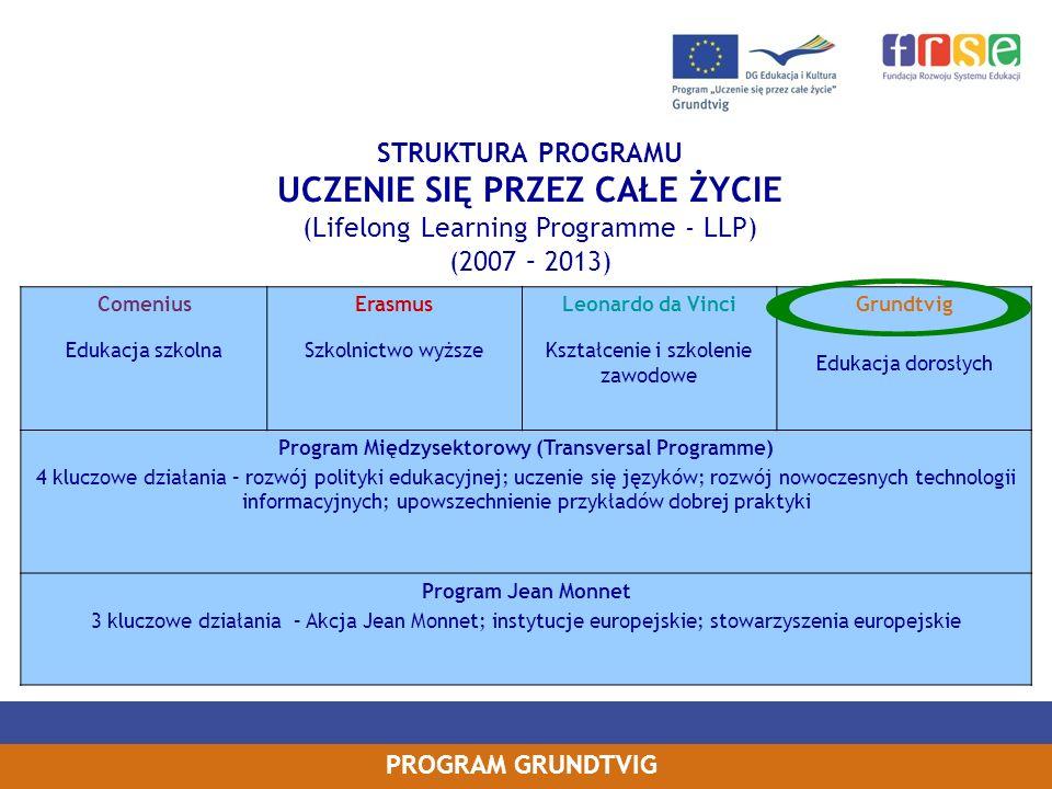 PROGRAM GRUNDTVIG STRUKTURA PROGRAMU UCZENIE SIĘ PRZEZ CAŁE ŻYCIE (Lifelong Learning Programme - LLP) (2007 – 2013) Comenius Edukacja szkolna Erasmus