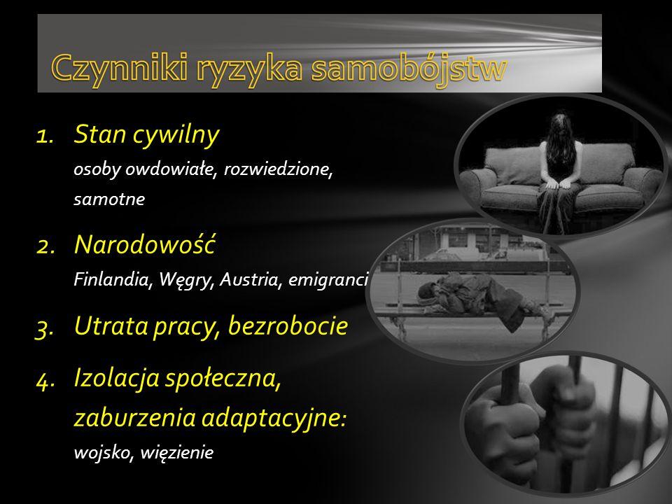 1.Stan cywilny osoby owdowiałe, rozwiedzione, samotne 2.Narodowość Finlandia, Węgry, Austria, emigranci 3.Utrata pracy, bezrobocie 4.Izolacja społeczn
