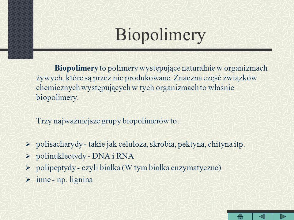 Biopolimery Biopolimery to polimery występujące naturalnie w organizmach żywych, które są przez nie produkowane. Znaczna część związków chemicznych wy