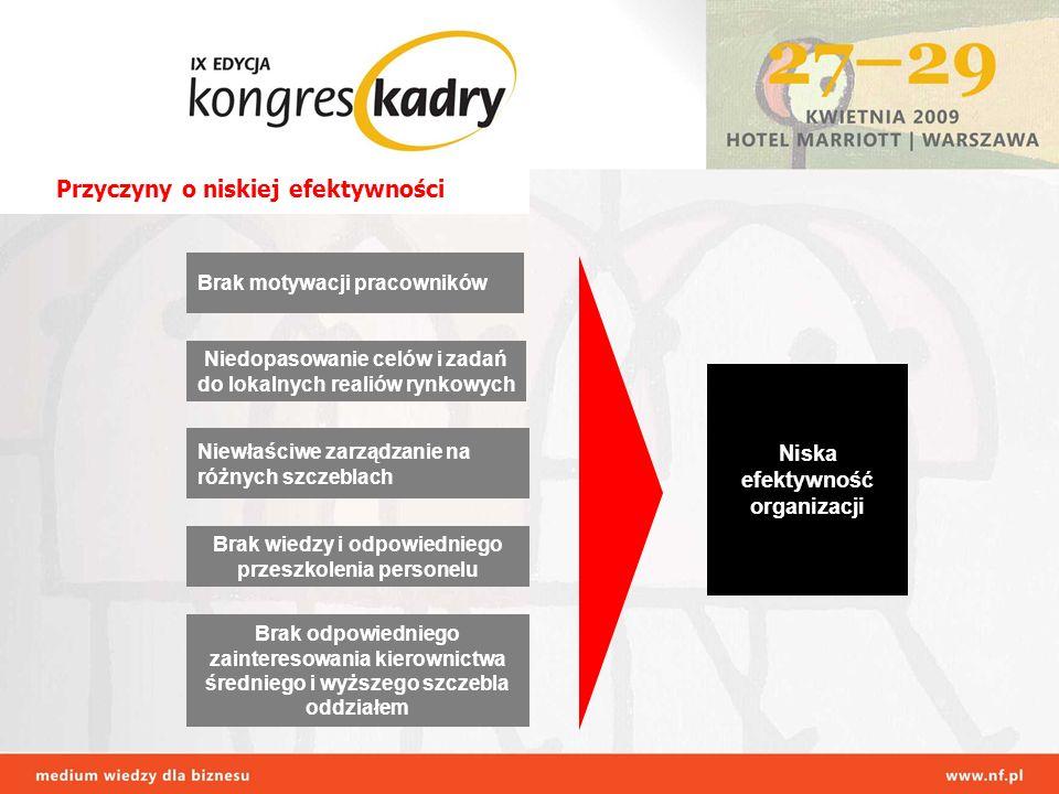 Brak wiedzy i odpowiedniego przeszkolenia personelu Brak odpowiedniego zainteresowania kierownictwa średniego i wyższego szczebla oddziałem Niedopasowanie celów i zadań do lokalnych realiów rynkowych Niewłaściwe zarządzanie na różnych szczeblach Brak motywacji pracowników Niska efektywność organizacji Przyczyny o niskiej efektywności