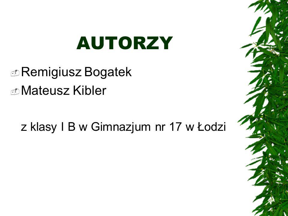AUTORZY Remigiusz Bogatek Mateusz Kibler z klasy I B w Gimnazjum nr 17 w Łodzi