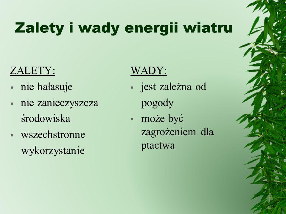 Zalety i wady energii wiatru ZALETY: nie hałasuje nie zanieczyszcza środowiska wszechstronne wykorzystanie WADY: jest zależna od pogody może być zagro