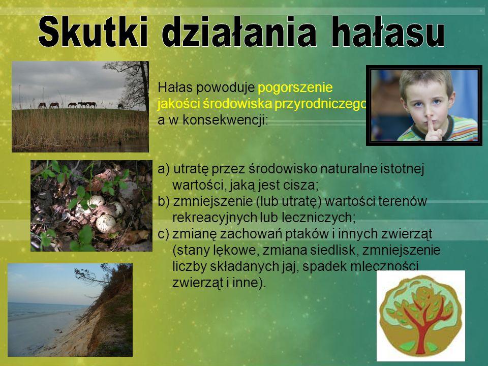 Hałas powoduje pogorszenie jakości środowiska przyrodniczego, a w konsekwencji: a) utratę przez środowisko naturalne istotnej wartości, jaką jest cisz