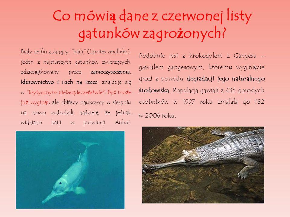 Co mówi ą dane z czerwonej listy gatunków zagro ż onych? Biały delfin z Jangcy,