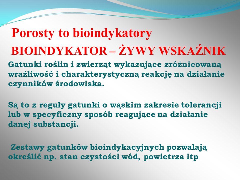 Porosty to bioindykatory BIOINDYKATOR – ŻYWY WSKAŹNIK Gatunki roślin i zwierząt wykazujące zróżnicowaną wrażliwość i charakterystyczną reakcję na dzia