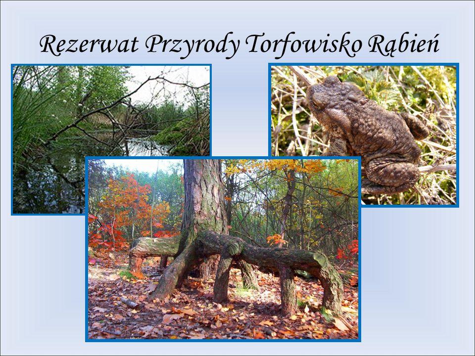 Rezerwat Przyrody Torfowisko Rąbień
