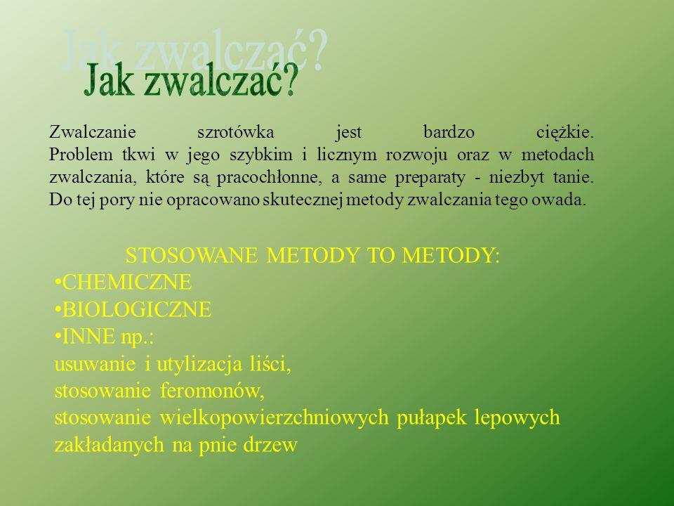 Szrotówek kasztanowcowiaczek, jak sama nazwa wskazuje atakuje przede wszystkim kasztanowce. Jego ofiarą pada zwłaszcza *kasztanowiec biały - (Aesculus