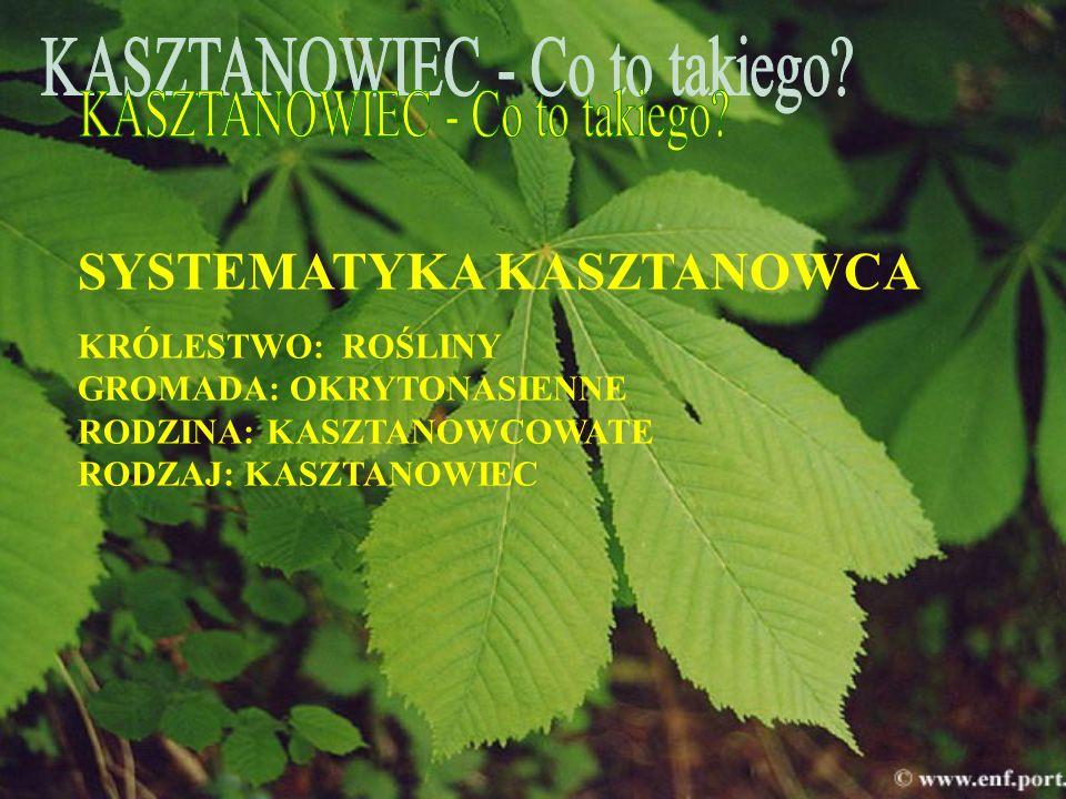 Pomóżmy kasztanowcom, jest to program ochrony kasztanowców założony przez fundację Nasza Ziemia.