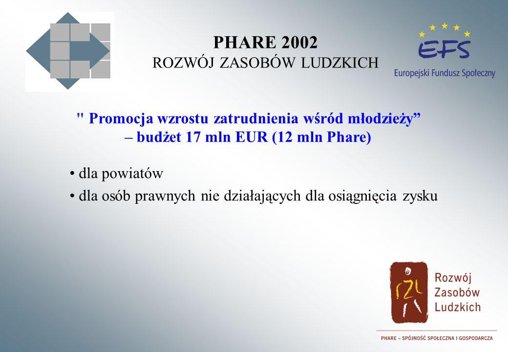 PHARE 2002 ROZWÓJ ZASOBÓW LUDZKICH Promocja wzrostu zatrudnienia wśród młodzieży – budżet 17 mln EUR (12 mln Phare) dla powiatów dla osób prawnych nie działających dla osiągnięcia zysku