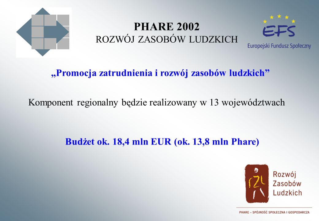 PHARE 2002 ROZWÓJ ZASOBÓW LUDZKICH Komponent regionalny będzie realizowany w 13 województwach Promocja zatrudnienia i rozwój zasobów ludzkich Budżet ok.