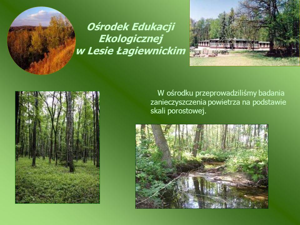 Ośrodek Edukacji Ekologicznej w Lesie Łagiewnickim W ośrodku przeprowadziliśmy badania zanieczyszczenia powietrza na podstawie skali porostowej.