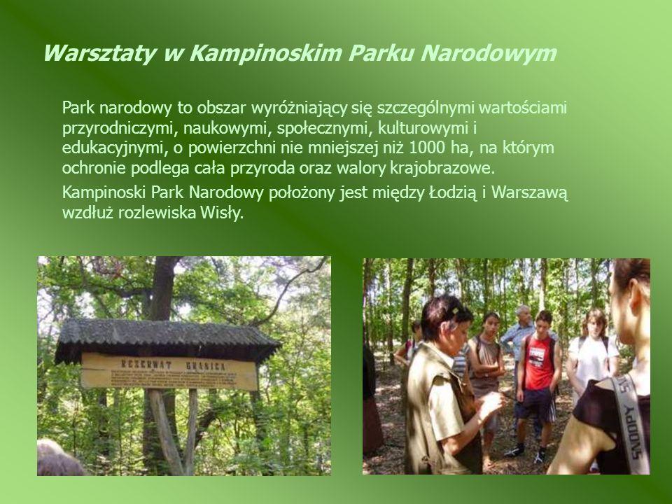 Warsztaty w Kampinoskim Parku Narodowym Park narodowy to obszar wyróżniający się szczególnymi wartościami przyrodniczymi, naukowymi, społecznymi, kult