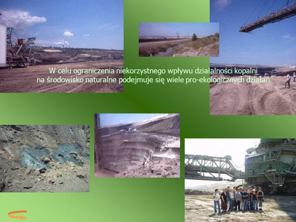 W celu ograniczenia niekorzystnego wpływu działalności kopalni na środowisko naturalne podejmuje się wiele pro-ekologicznych działań.
