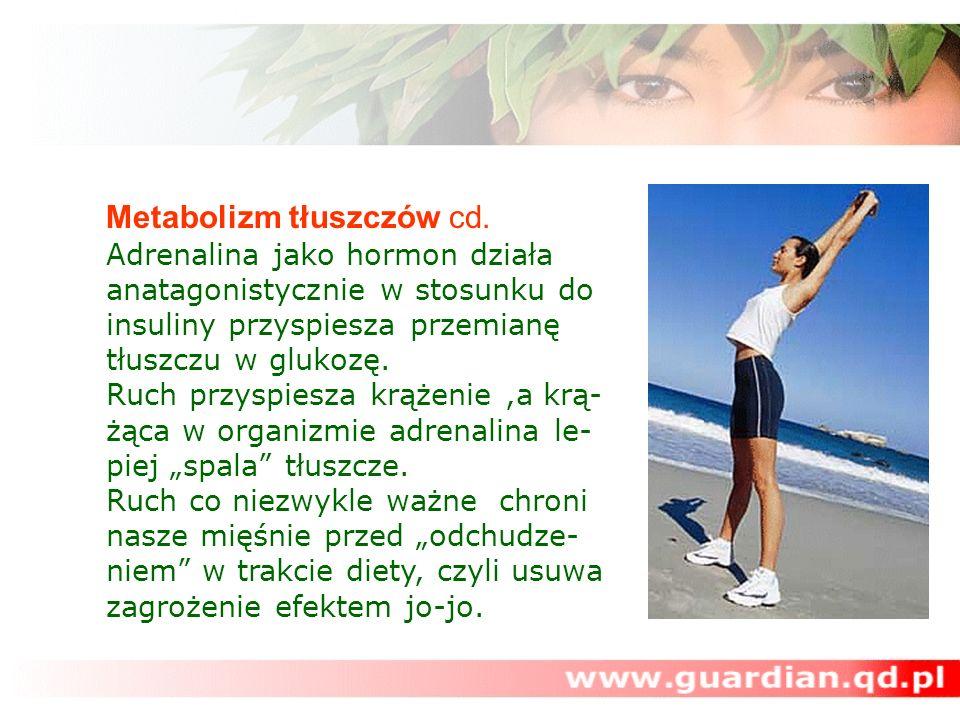 Metabolizm tłuszczów cd. Adrenalina jako hormon działa anatagonistycznie w stosunku do insuliny przyspiesza przemianę tłuszczu w glukozę. Ruch przyspi