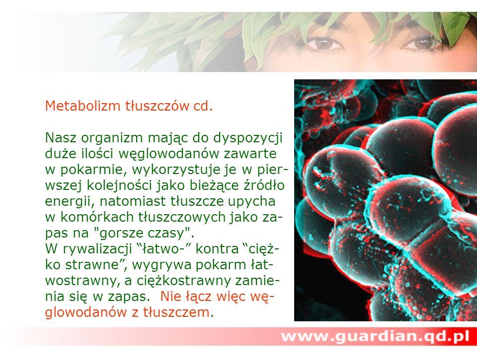Metabolizm tłuszczów cd.