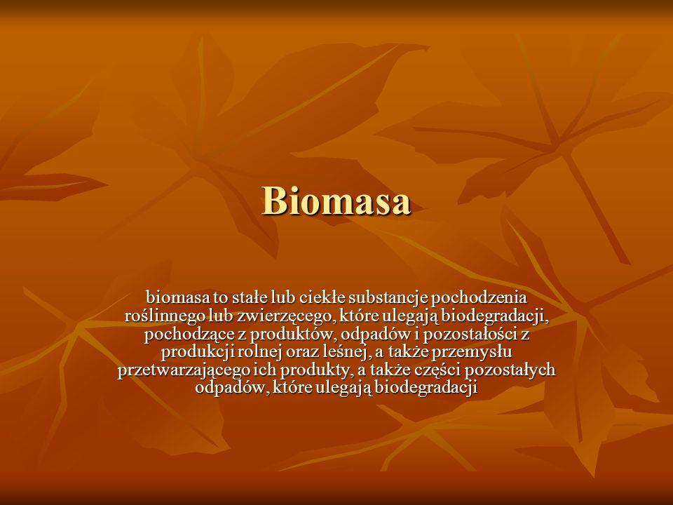 Podział paliw z biomasy Stałe Biomasa rolnicza Biomasa leśna Odpady organiczne z rolnictwa Osady ściekowe Odpady przemysłowe organiczne Organiczne odpady komunalne Ciekłe Alkohole Estry Biokomponenty Gazowe Biogaz