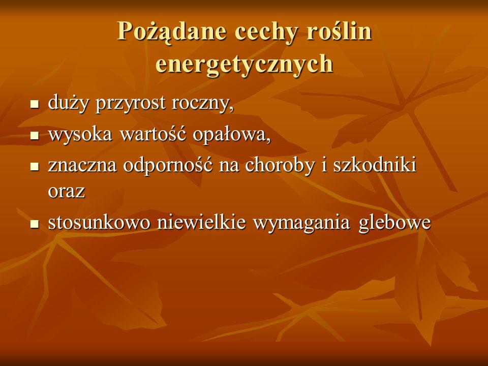 Pożądane cechy roślin energetycznych duży przyrost roczny, duży przyrost roczny, wysoka wartość opałowa, wysoka wartość opałowa, znaczna odporność na