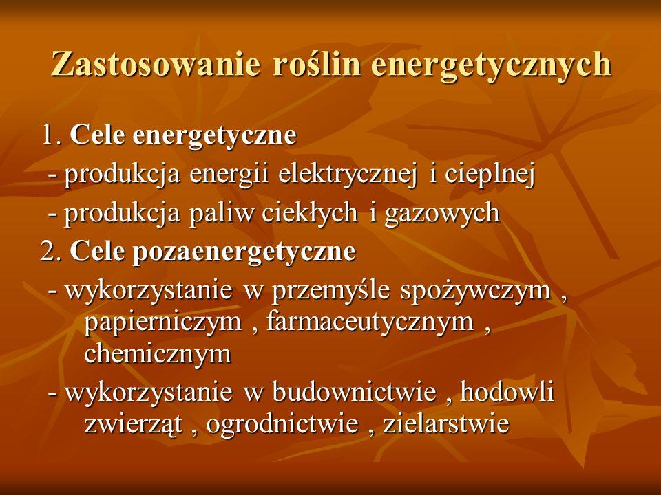 Zastosowanie roślin energetycznych 1. Cele energetyczne - produkcja energii elektrycznej i cieplnej - produkcja energii elektrycznej i cieplnej - prod