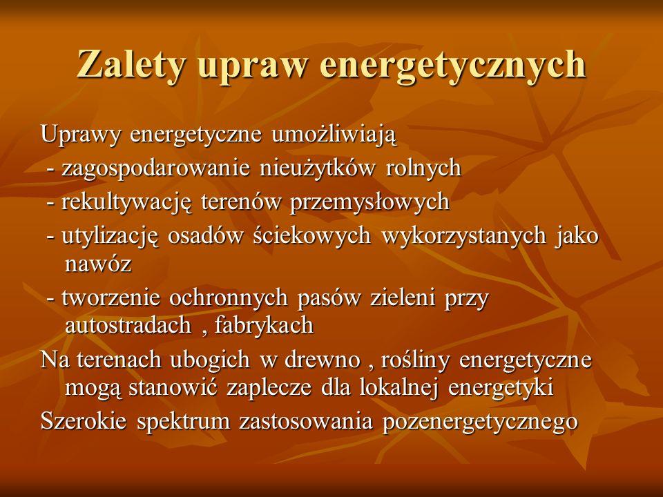 Zalety upraw energetycznych Uprawy energetyczne umożliwiają - zagospodarowanie nieużytków rolnych - zagospodarowanie nieużytków rolnych - rekultywację