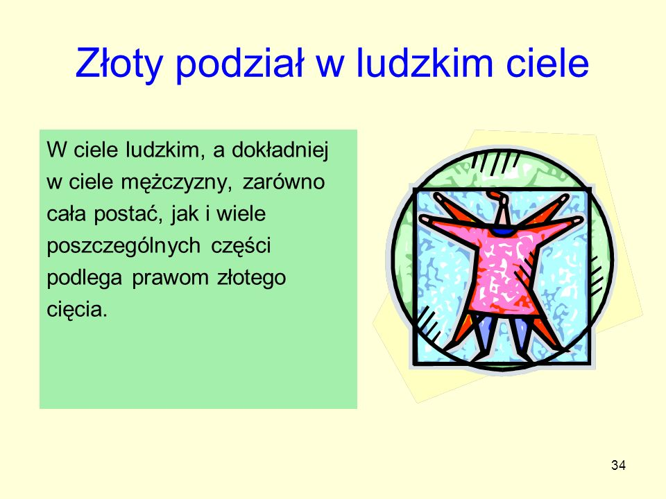 34 Złoty podział w ludzkim ciele W ciele ludzkim, a dokładniej w ciele mężczyzny, zarówno cała postać, jak i wiele poszczególnych części podlega prawo