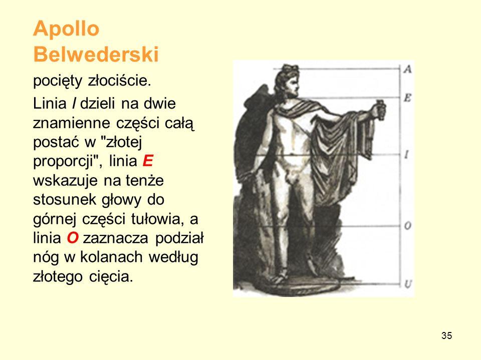 35 Apollo Belwederski pocięty złociście. Linia I dzieli na dwie znamienne części całą postać w