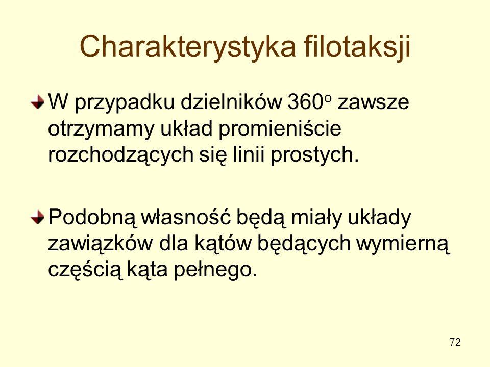 72 Charakterystyka filotaksji W przypadku dzielników 360 o zawsze otrzymamy układ promieniście rozchodzących się linii prostych. Podobną własność będą