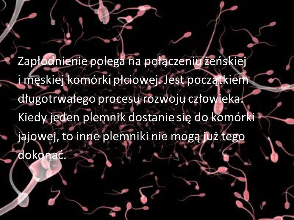 Prezentację wykonała: Joanna Kluge WDŻwR Cieszyn 2008