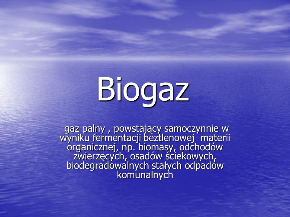 Biogaz gaz palny, powstający samoczynnie w wyniku fermentacji beztlenowej materii organicznej, np.