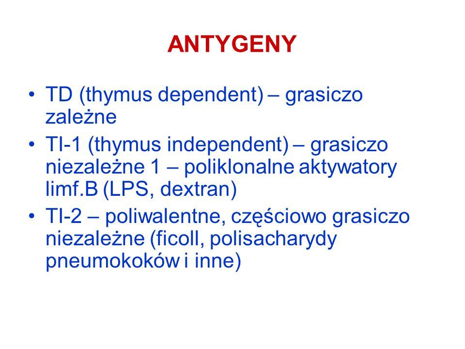 ANTYGENY TD (thymus dependent) – grasiczo zależne TI-1 (thymus independent) – grasiczo niezależne 1 – poliklonalne aktywatory limf.B (LPS, dextran) TI