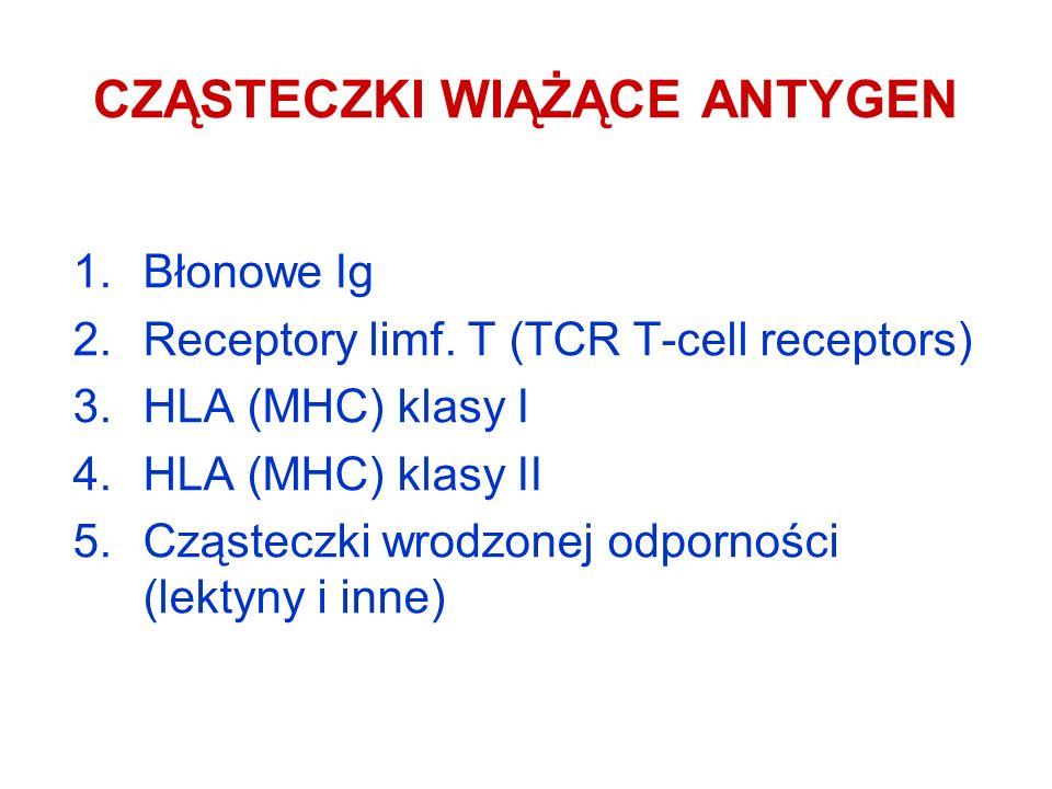 CZĄSTECZKI WIĄŻĄCE ANTYGEN 1.Błonowe Ig 2.Receptory limf. T (TCR T-cell receptors) 3.HLA (MHC) klasy I 4.HLA (MHC) klasy II 5.Cząsteczki wrodzonej odp
