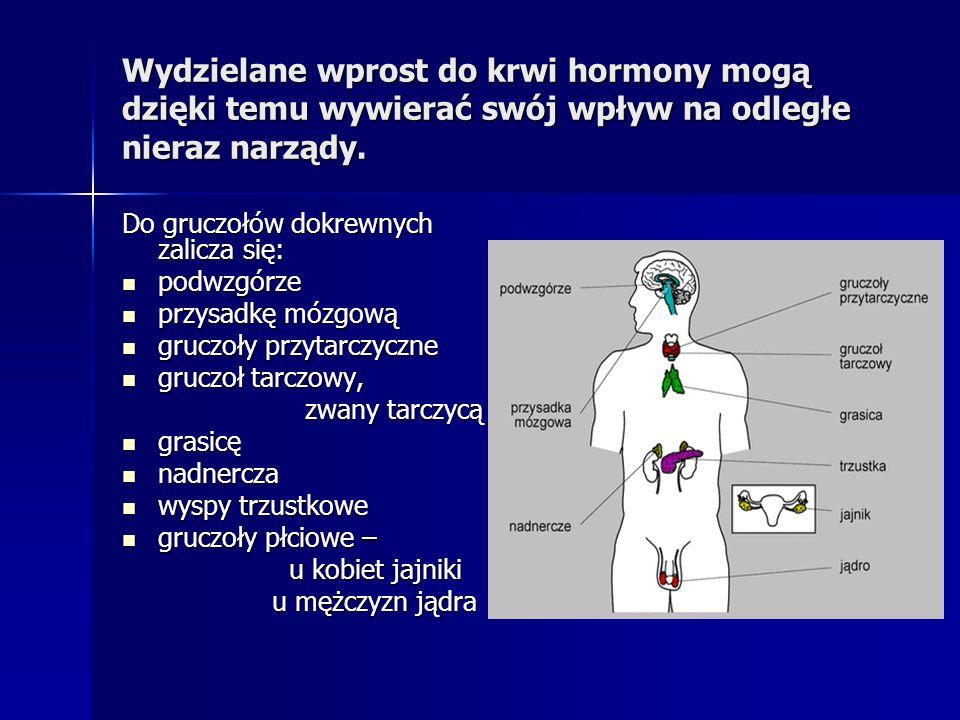Wydzielane wprost do krwi hormony mogą dzięki temu wywierać swój wpływ na odległe nieraz narządy. Do gruczołów dokrewnych zalicza się: podwzgórze podw