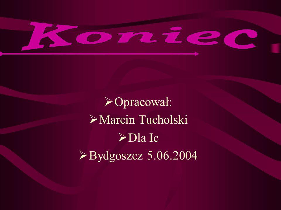 Opracował: Marcin Tucholski Dla Ic Bydgoszcz 5.06.2004