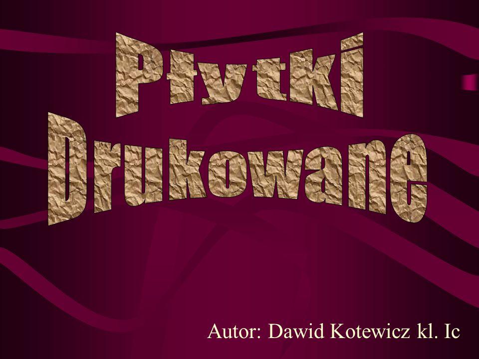 Autor: Dawid Kotewicz kl. Ic