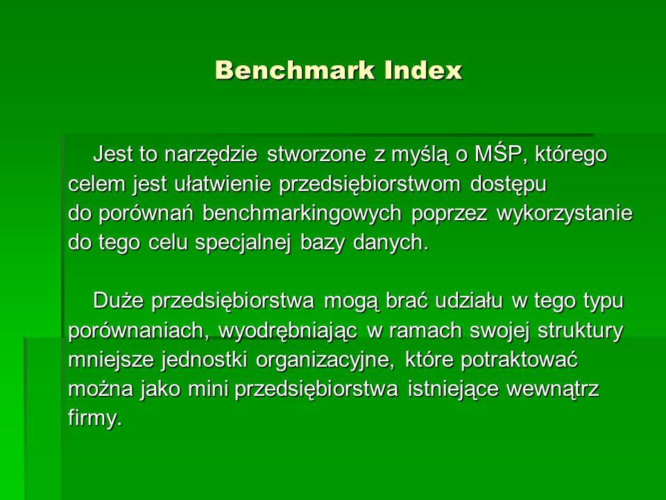 Benchmark Index Jest to narzędzie stworzone z myślą o MŚP, którego celem jest ułatwienie przedsiębiorstwom dostępu do porównań benchmarkingowych poprzez wykorzystanie do tego celu specjalnej bazy danych.